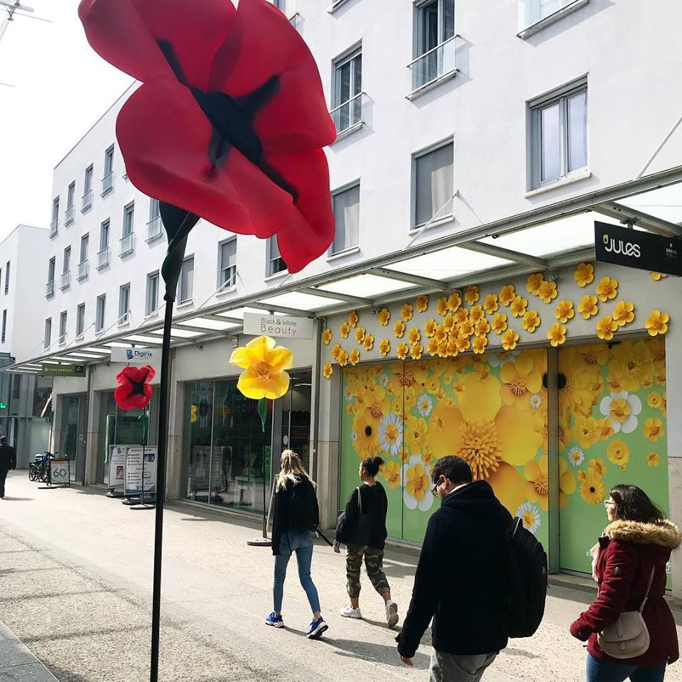 flower-power-grand-angle-accessite-agence-shops