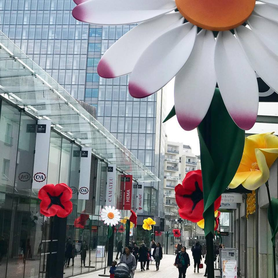 flower-power-grand-angle-accessite-agence-shops1