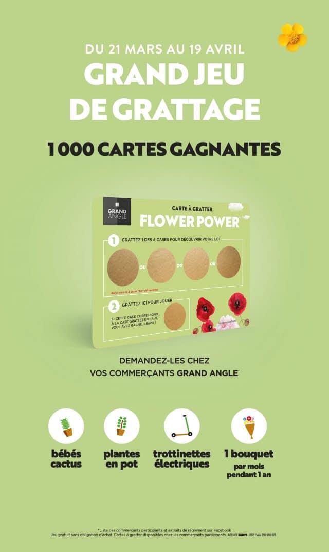ga flower instore ickets shops